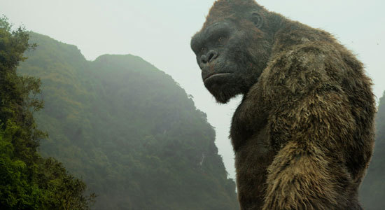 Kong sees unwelcomed visitors