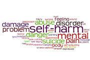 Preview self harm pre