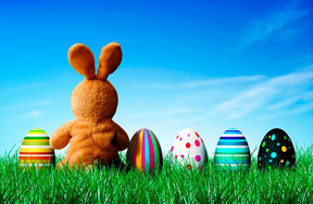 Preview all about easter bunny pre