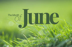 Preview the month june holidays pre