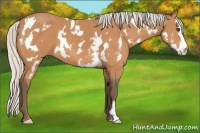 Horse Color:White Spotted Silver Bay Frame