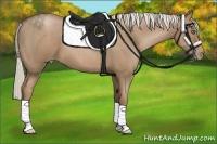 Horse Color:Silver Black Pearl