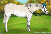 Horse Color:Perlino Splash