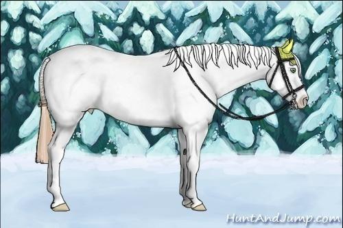 Horse Color:Amber Cream Champagne Splash Tobiano Frame Appaloosa Rabicano