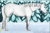 Horse Color:Silver Amber Champagne Pearl Tobiano Appaloosa