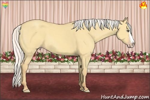 Horse Color:Silver Amber Cream Champagne Dun Splash Rabicano