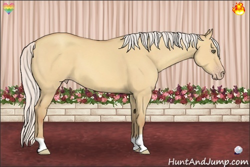 Horse Color:Silver Amber Champagne Dun