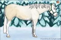 Horse Color:Silver Classic Champagne Roan Dun Sabino Splash