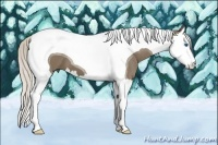 Horse Color:Silver Smokey Black Splash Tobiano