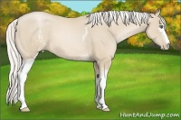 Horse Color:White Spotted Silver Smokey Black Pearl
