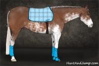 Horse Color:Silver Bay Sabino