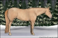 Horse Color:Gold Champagne Sabino  Brindle