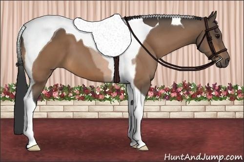 Horse Color:Buckskin Tobiano