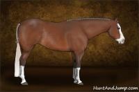 Horse Color:Silver Bay Splash Rabicano