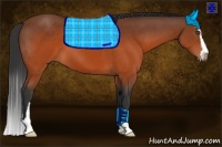 Horse Color:Brown Sabino