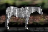 Horse Color:Black Ice Sabino