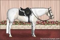 Horse Color:Silver Smokey Creme Tobiano