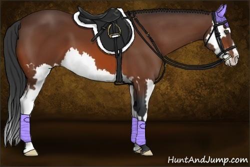 Horse Color:Bay Sabino Splash Frame