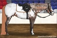 Horse Color:Liver Chestnut Sabino Splash Frame Appaloosa