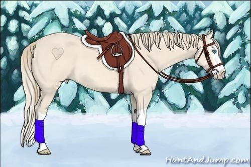 Horse Color:Perlino Splash