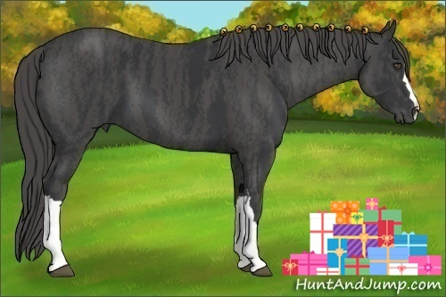 Horse Color:Black  Brindle