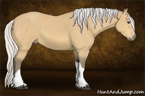 Horse Color:Silver Buckskin