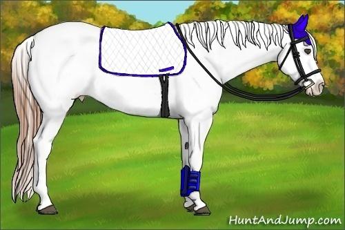 Horse Color:Black Frame Appaloosa