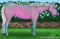 Horse Color:Watercolor Silver Bay