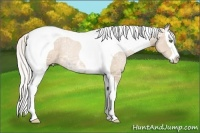 Horse Color:Silver Smokey Black Ice Pearl Splash Tobiano