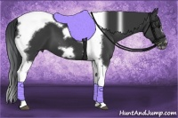 Horse Color:Black Splash Tobiano Frame
