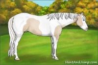 Horse Color:Silver Smokey Black Pearl Splash Tobiano