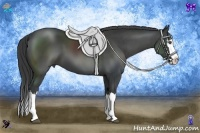 Horse Color:Black Sabino Splash