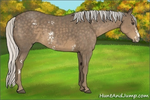 Horse Color:White Spotted Silver Smokey Black Frame