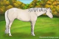 Horse Color:Silver Smokey Black Pearl