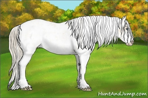 Horse Color:Perlino Sabino  Brindle