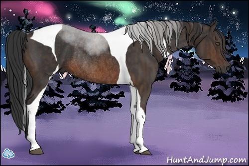 Horse Color:Brown Tobiano Rabicano  Brindle