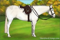 Horse Color:White Spotted Perlino Dun