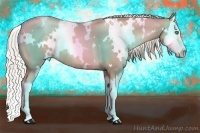 Horse Color:White Spotted Chocolate Palomino Pearl Splash