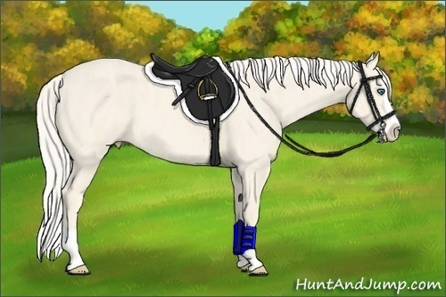 Horse Color:Cremello Splash  Brindle