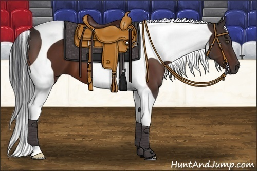 Horse Color:Bay Tobiano Frame