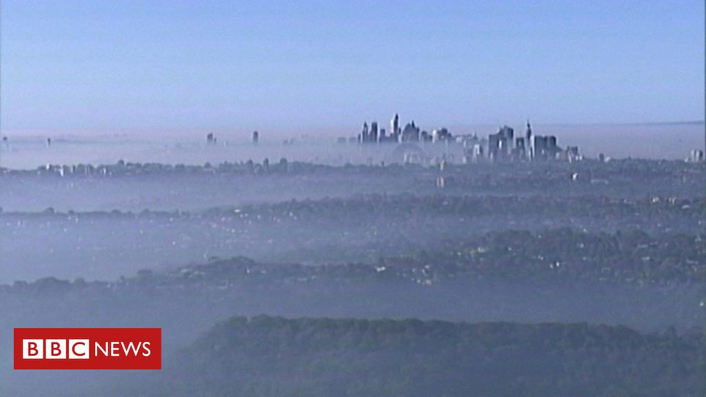 Australia fires: Sydney blanketed by
