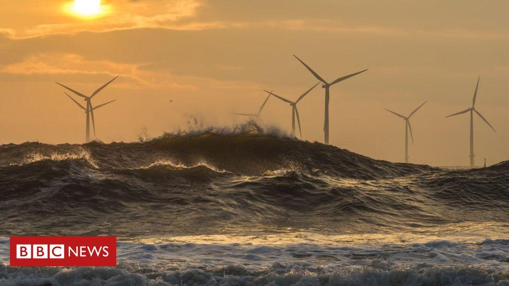 Renewable energy: Rise in global