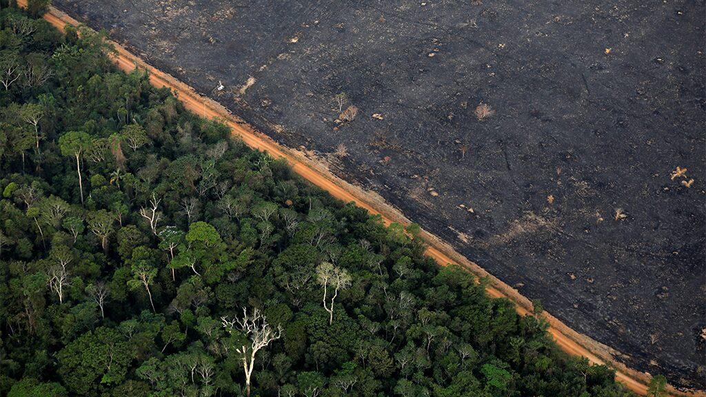 Amazon deforestation in Brazil hits