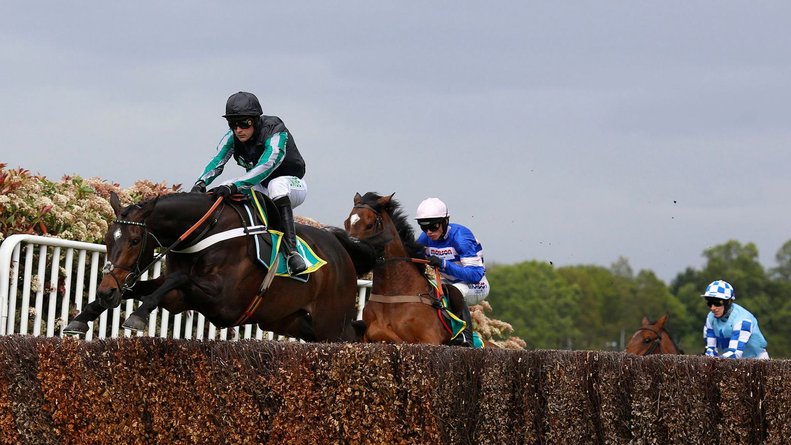 Altior ruled out of Champion