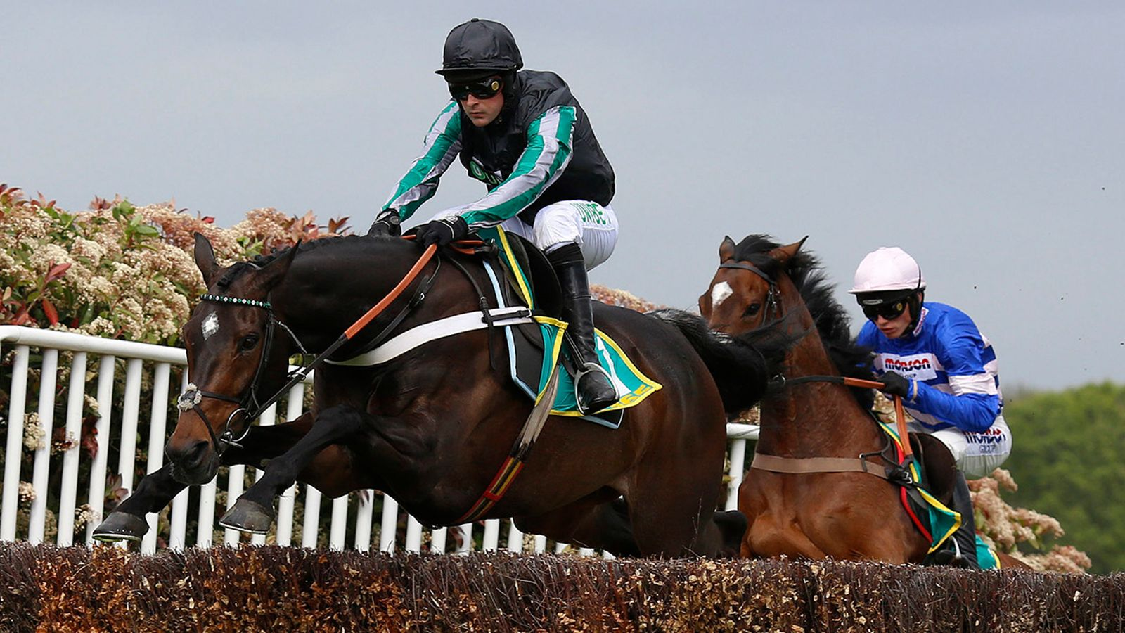 Altior to have racecourse spin