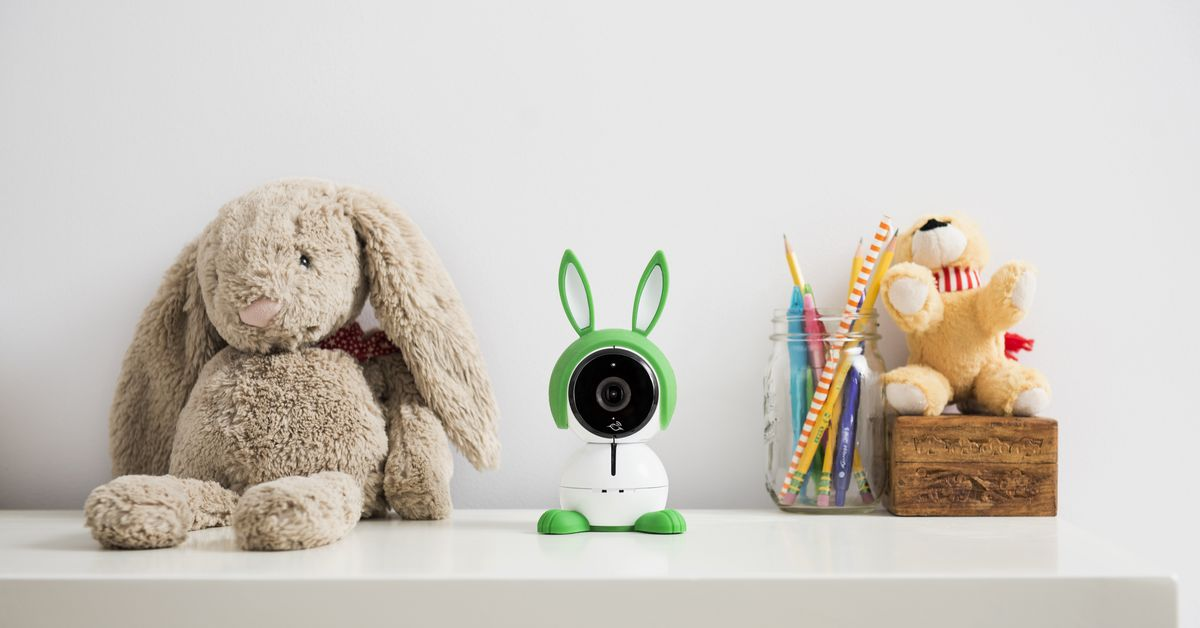 Arlo and Blink cameras are