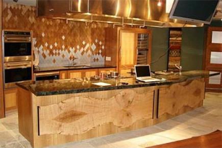 一个厨房——特拉维斯的厨房。