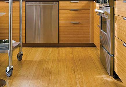 Kitchen With Wood Flooring and Cabinets