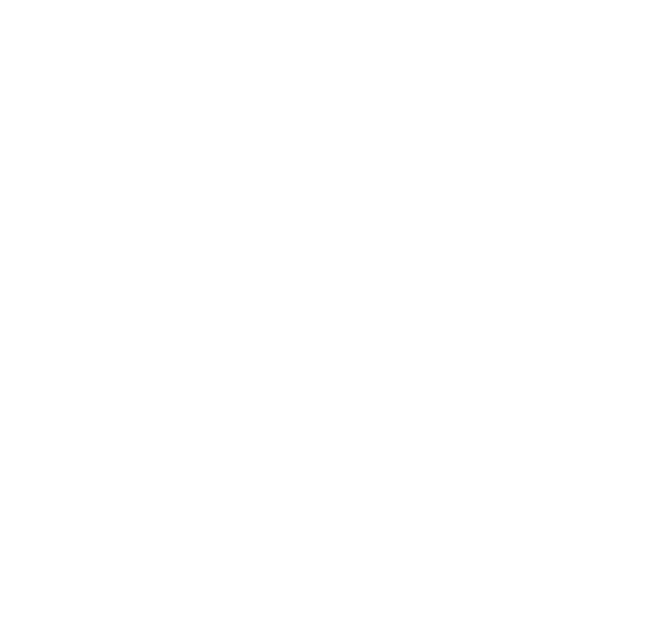 Phone icon white