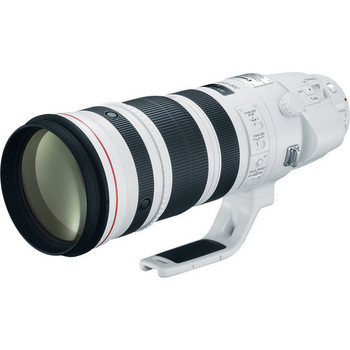 Rent Canon EF 200-400mm f/4L IS USM Extender 1.4x